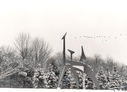 Alexander_Calder_in_Winter~0.jpg